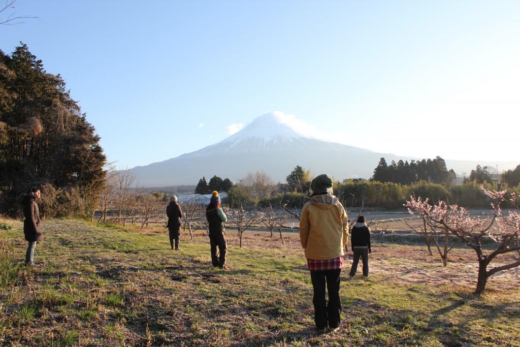 Mt. Fuji and Participants